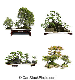 this chinese bonsai is made of juniper - china bonsai