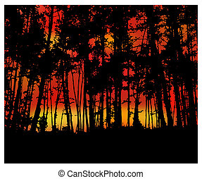 Woodland eco banner. Fire in forest.Trunks. - Woodland eco...