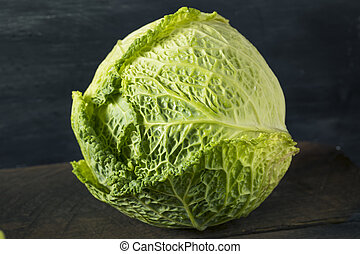 Raw Organic Savoy Cabbage Head Ready For Cooking