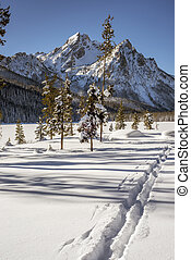 Cross country ski trails lead into the Idaho mountains -...