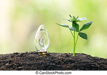 symbolizing renewable energy, bio energy - symbolizing...