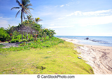 undeveloped beach property Corn Island Nicaragua -...