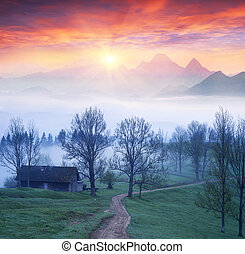 Lazeyschina Lazeshchyna village in the mist - A gentle...