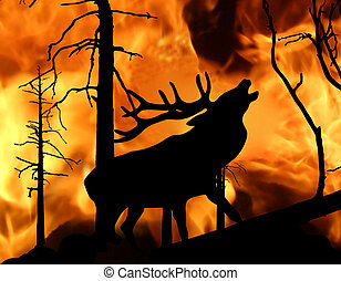 illustration of the deer running away from fire in wood