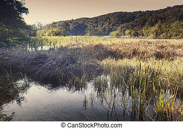 Moorland - Beautiful natural lakes in Croatia, between the...