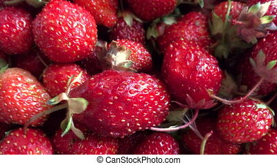Red juicy big Strawberry close-up