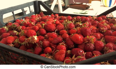 big box of ripe delicious strawberries - big box of ripe red...
