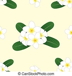 White Plumeria, Frangipani on Ivory Beige Background. Vector Illustration