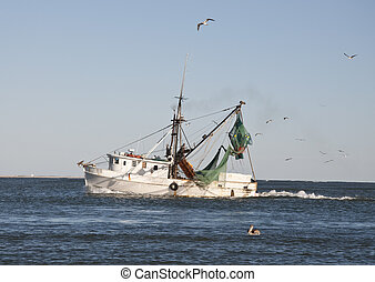 Shrimp Boat with Flock of Sea Gulls in the Atlantic Ocean in...