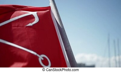 Saint-Petersburg flag slowmotion - Saint-Petersburg flag on...