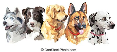 Set of big dog breeds - Set of colorful vector portraits of...