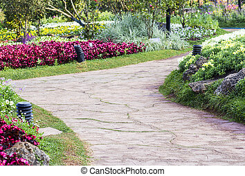 Pathway in the flower garden