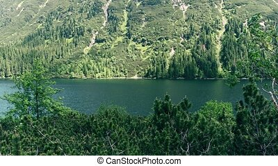 Pan shot of forest shores of the mountainous lake Morskie...