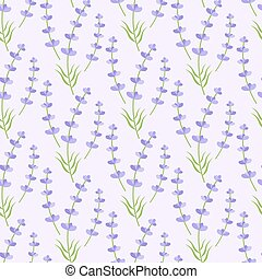 Lavender vector seamless pattern, Flat design of...