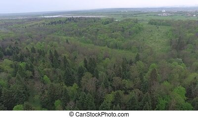 Flying over green deciduous forest with small glades, aerial view