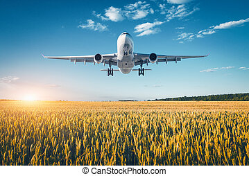 Landscape with big white passenger airplane - Amazing...