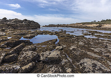 Monterey Peninsula Coastline - California - Coastline of the...