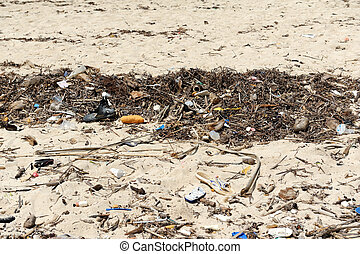 Waste on the sands causes environmental pollution