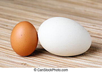 Goose egg and egg