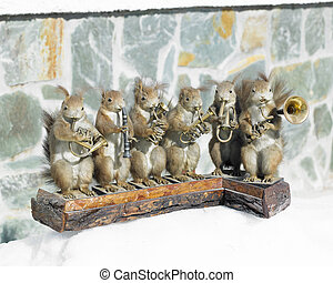 stuffed squirrels band