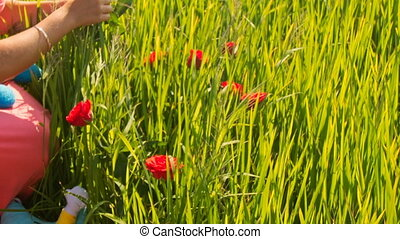 Girl Sticks Red Roses in Green Rice Field