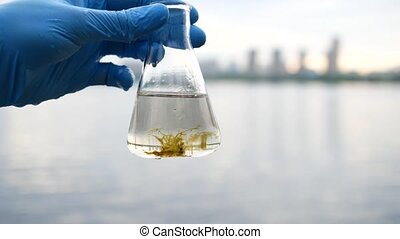 The scientist's hand holds a flask of water from the river....