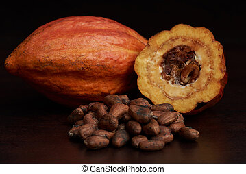 Orange fresh cacao pod