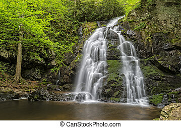 Spruce Flats Falls In The Great Smoky Mountains