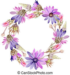Wildflower immortelle flowerwreath  in a watercolor style.