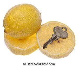 Car or House is a Lemon