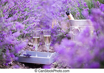 Delicious champagne over lavender. - Delicious champagne...