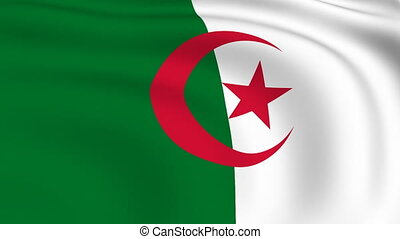 Flying Flag of Algeria | LOOPED |