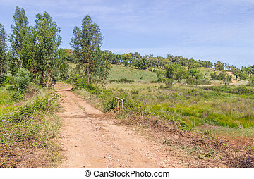 Farm road in Vale Seco, Santiago do Cacem, Alentejo,...