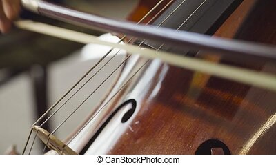 Women's hands playing violoncello - Close up of women's...