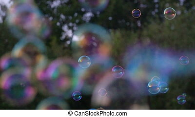 Soap bubbles on a background of green grass in a summer park
