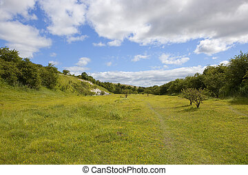 quarry nature reserve - a nature reserve in an old quarry...