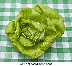 Hydroponic Bibb Lettuce on a Green Picnic Blanket. Healthy...