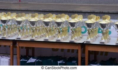 Trophies. View of trophies. Low DOF - Trophies. View of...