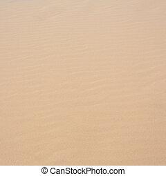 white sand dune desert in Mui Ne, Vietnam - close-up white...