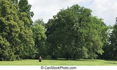 recreation time in the public park in Poland in the city of...