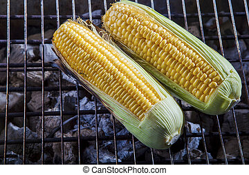 yellow corn grilled on charcoal stove