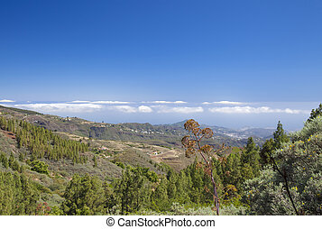 Gran Canaria, June, view north east from Las Cumbres, the...