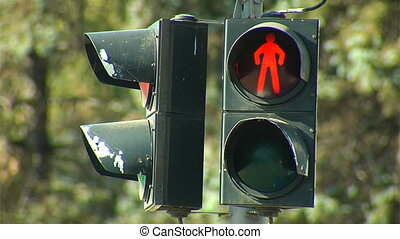 traffic light for pedestrian - traffic light changed stop...