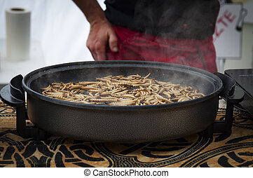mealworm on big pan