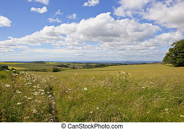yorkshire wolds landscape - a summer yorkshire wolds...