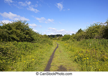 cinder footpath - a cinder footpath and bridleway lined with...