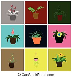 assembly flat icons houseplants - assembly of flat icons...