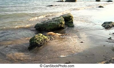 Stones on sandy seashore. Little foamy waves. Facts about...