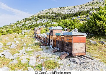 Mountain apiary in Croatian mountains. sveti Jure mountain,...