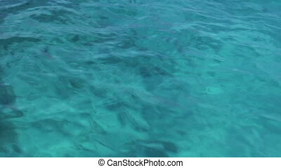 Tropical sea - Blue - Blue water surface with almost no...